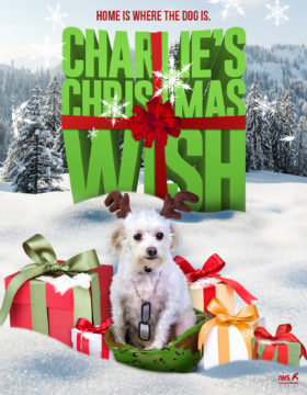 Charlie's Christmas Wish