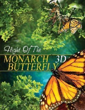 Flight of the Monarch Butterfly