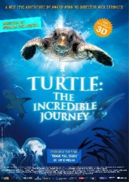 3D    Turtle: The incredible Journey