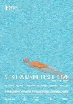 A Fish Swimming Upside Down
