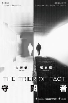 The Trier of Fact