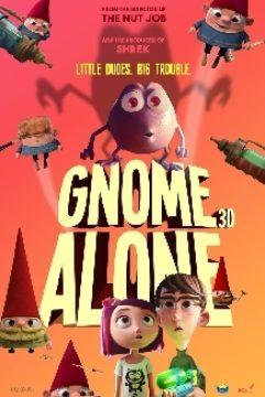 Gnome Alone (3D)
