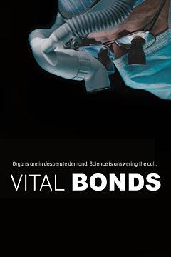 Vital Bonds