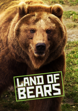 Land Of Bears