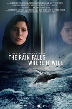 The Rain Falls Where It Will