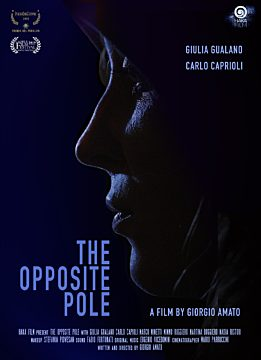 The opposite pole