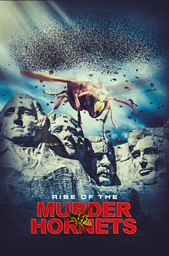 Rise of the Murder Hornets