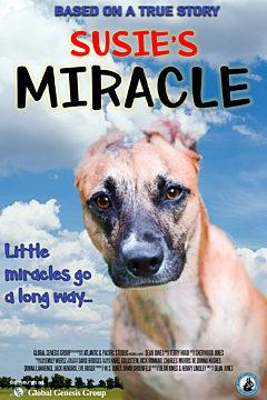 Susies Miracle
