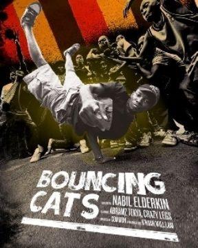 Bouncing Cats