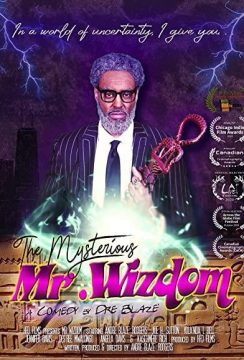 The Mysterious Mr. Wizdom