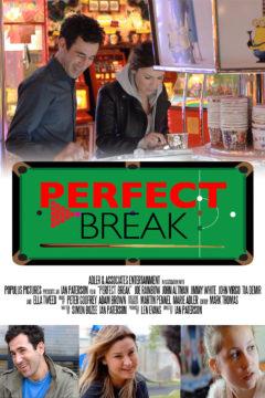 Perfect Break