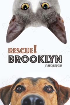 Rescue! Brooklyn