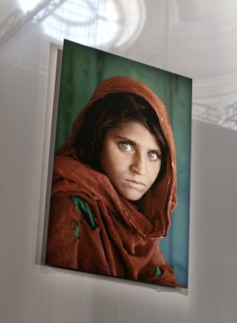 McCurry: The Pursuit of Colour