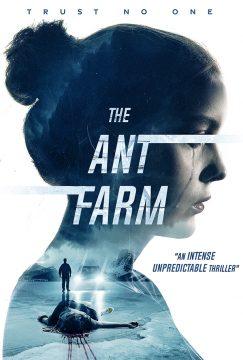Ant Farm, The